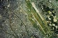 Fukuoka Airport and Hakata Station areas Aerial photograph.jpg