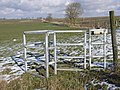 Galvanized kissing gate - geograph.org.uk - 1718230.jpg