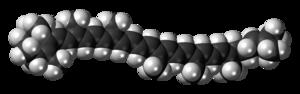 Gamma-Carotene - Image: Gamma Carotene 3D spacefill