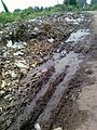 Garbage Chinawal-Waghoda road.jpg