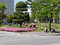 Garden works at ERICA Hanyang University campus 01.JPG