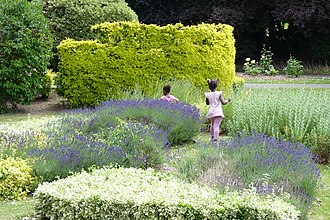 Abbey Park, Leicester - Image: Gardens at Abbey Park, Leicester