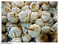 Garlic - Flickr - pinemikey.jpg