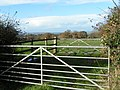 Gates and field next to the A3052 - geograph.org.uk - 1595553.jpg