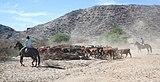 Gauchos in Calchaquí Valleys, Argentina 01.jpg