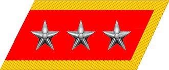 Ranks of the People's Liberation Army Ground Force - Image: General collar insignia (PRC)