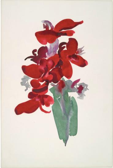 Georgia O'Keeffe Red Canna 1915 Yale University Art Gallery