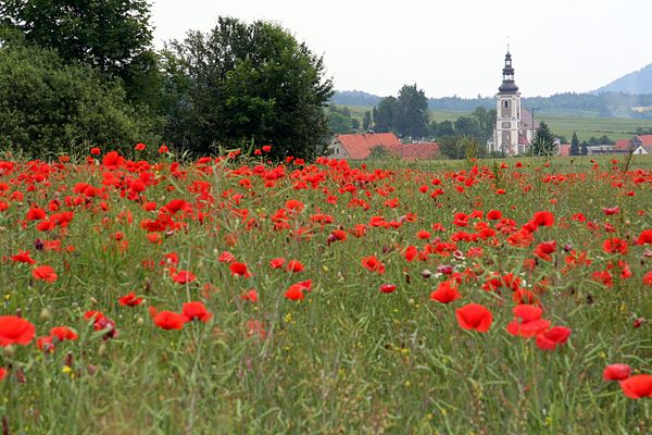 Gabersdorf