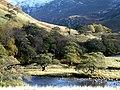 Glen Strathfarrar - geograph.org.uk - 1029275.jpg