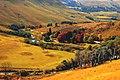 Glenhaven - panoramio (2).jpg