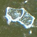 Globotruncana.jpg