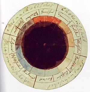 Color psychology - Image: Goethe Schiller Die Temperamentenrose