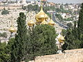 Gold Domes over Trees 2181.jpg