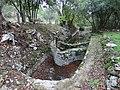 Grand bassin du jardin du mas.jpg