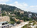 Grasse - panoramio (2).jpg