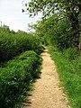 Green Lane - geograph.org.uk - 797426.jpg