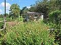 Green Spring Gardens in August (14733968800).jpg