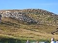 Gregge - panoramio.jpg
