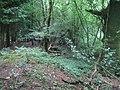 Grim's Ditch, Stockton Wood near Stockton 5 - geograph.org.uk - 924998.jpg