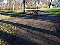 Großer Garten, Dresden (351).jpg