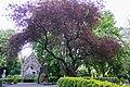 Groot overzicht RK-begraafplaats Drieboomlaan, Hoorn.jpg
