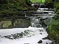 Guiseley Beck, through Spring Wood - geograph.org.uk - 11853.jpg