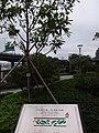 HK 北角海濱花園 North Point Promenade name sign 糖水道 Tong Shui Road December 2018 SSG.jpg