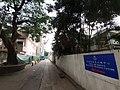 HK CWB 大坑 Tai Hang 銅鑼灣道 Tung Lo Wan Road facades October 2019 SS2 28.jpg