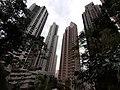 HK ML 半山區 Mid-levels 地利根德里 Tregunter Path view buildings February 2020 SS2 12.jpg