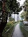 HK ML 半山區 Mid-levels 波老道 Borrett Road February 2020 SS2 11.jpg