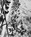 HMS Dorsetshire Bismarck survivors.jpg