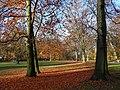 Hamm, Germany - panoramio (2638).jpg