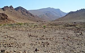 Negev Mountains - Image: Har 'Arif 041014