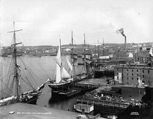 Saint John Harbour - Saint John Harbour around 1898