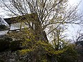 Hasedera Temple 長谷寺 - panoramio (6).jpg