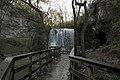 Hayden Falls Walkway 3.jpg