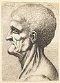 Head of a toothless man with bare, sinewy neck in profile to left MET DP823720.jpg