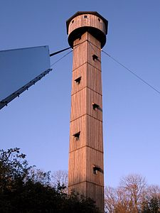 Concepts in Fetal Movement Research 1993