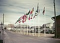 Helsingin olympialaiset 1952 - XLVIII-252 - hkm.HKMS000005-km0000mrce.jpg