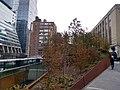 High Line Nov 2019 18.jpg