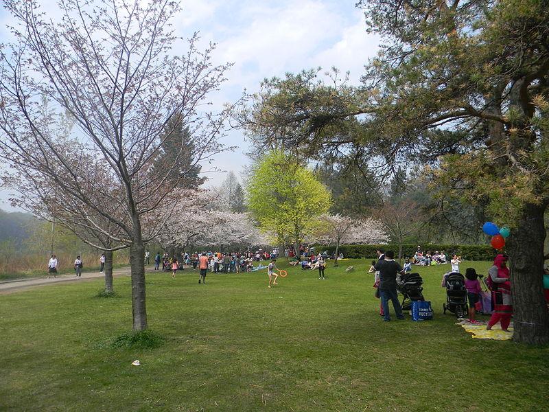 High Park Toronto inverno