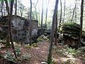 Hike-Bear-rocks ForestWander.JPG