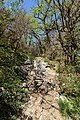Hike to Taillefer (39886287400).jpg