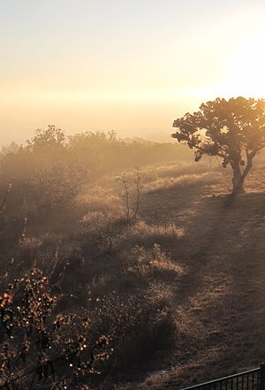 A sunrise in the Texas hill country (Ingram, T...