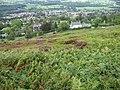 Hillside towards Ilkley - geograph.org.uk - 1476008.jpg