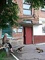 Himgorodok (Sumy, Ukraine) (27440356724).jpg