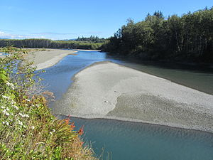 Hoh River - Near the mouth of the river