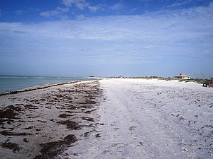 On the beach looking north with the Gulf of Me...