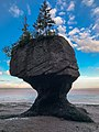 Hopewell Rocks New Brunswick Canada IMG 2431 (38514785414).jpg