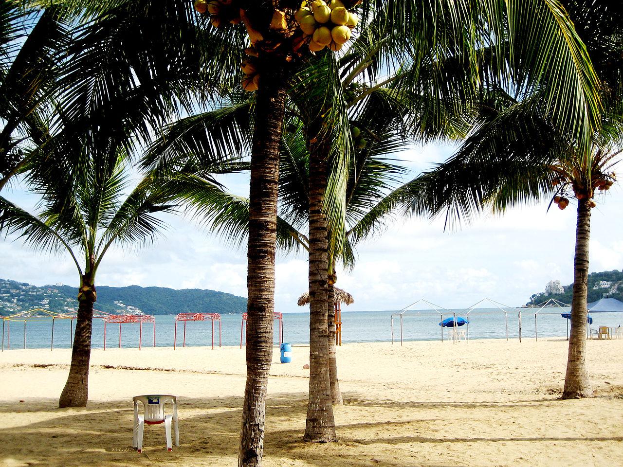 File Hornos Beach  Acapulco  Mx Jpg